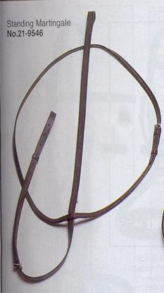 bridle-2.jpg