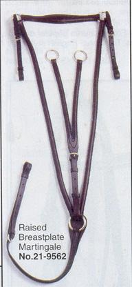 bridle-3.jpg